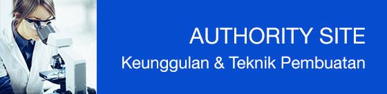 Authority Site: Definisi, Model Bisnis, Sejarah, Keunggulannya