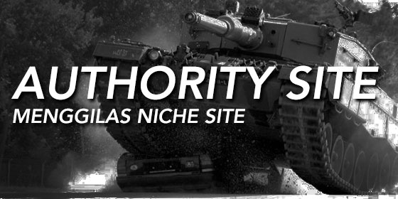 perbandingan authority site vs niche site